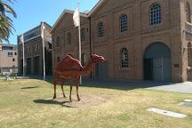 Newcastle Museum, Newcastle, Australia