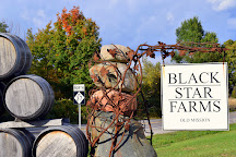 Black Star Farms Old Mission Winery, Traverse City, United States