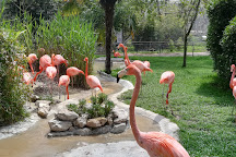 Lisbon Zoo, Lisbon, Portugal