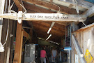 Buck Bay Shellfish Farm