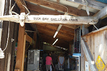 Buck Bay Shellfish Farm, Olga, United States