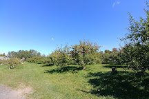 Hacketts Orchard, South Hero, United States