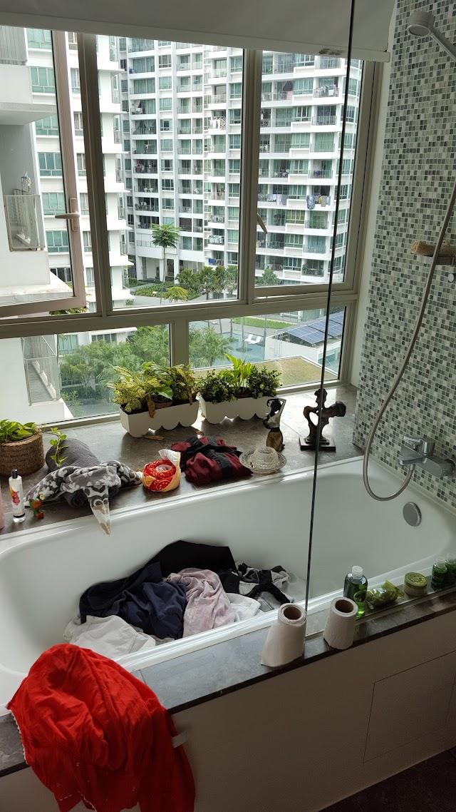 Singapore Livia condominium