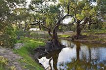 Morgan Conservation Park, Morgan, Australia