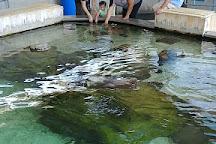Children's Aquarium at Fair Park, Dallas, United States