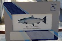 Wizard Falls Fish Hatchery, Camp Sherman, United States