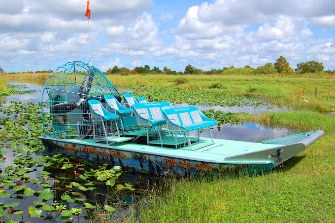 Visit Airboat Wilderness Rides On Your Trip To Vero Beach
