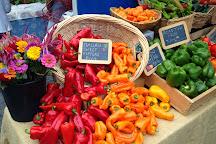 Watauga County Farmer's Market, Boone, United States