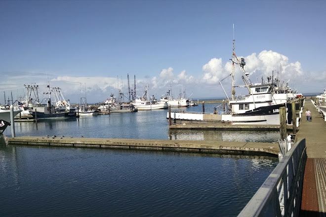 Westport Sport Fishing, Westport, United States