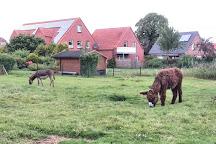 Haustierpark Werdum, Werdum, Germany