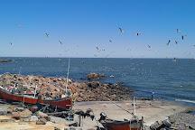Barcos del Este, Piriapolis, Uruguay