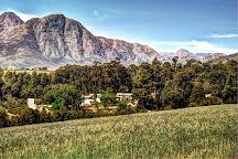 Alto Wine Estate, Stellenbosch, South Africa