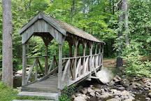 Willard Brook State Forest, Ashby, United States