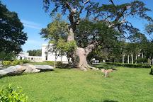 Quinta de San Pedro Alejandrino, Santa Marta, Colombia