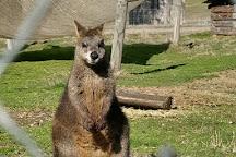 Mansfield Zoo, Mansfield, Australia