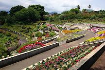 Izu Shikinohana Park, Ito, Japan