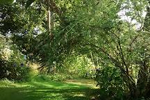Jardin Shamrock, Varengeville-sur-Mer, France