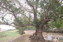 Shrimant Bajirao Peshwa Samadhi, Sanawad, India