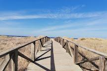 Playa El Palmar, Vejer de la Frontera, Spain