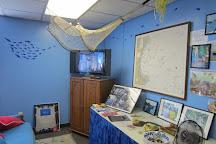 Explore the Ocean World Oceanarium, Hampton, United States