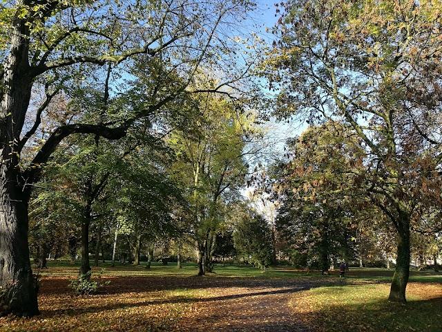 Friedens Park