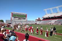 Williams-Brice Stadium, Columbia, United States