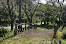 Teraogaharasenbon Sakura Park, Seki, Japan