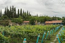 Shumi Winery, Tsinandali, Georgia