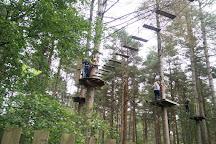 Go Ape Moors Valley, Ringwood, United Kingdom