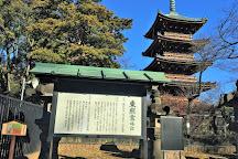 Kyu Kaneiji Five-Storied Pagoda, Uenokoen, Japan