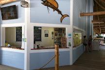 Florida Keys Aquarium Encounters, Marathon, United States
