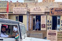 Trotters Tours & Travels Camel Safari, Jaisalmer, India