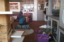 Cutie Cats Cafe, Jakarta, Indonesia