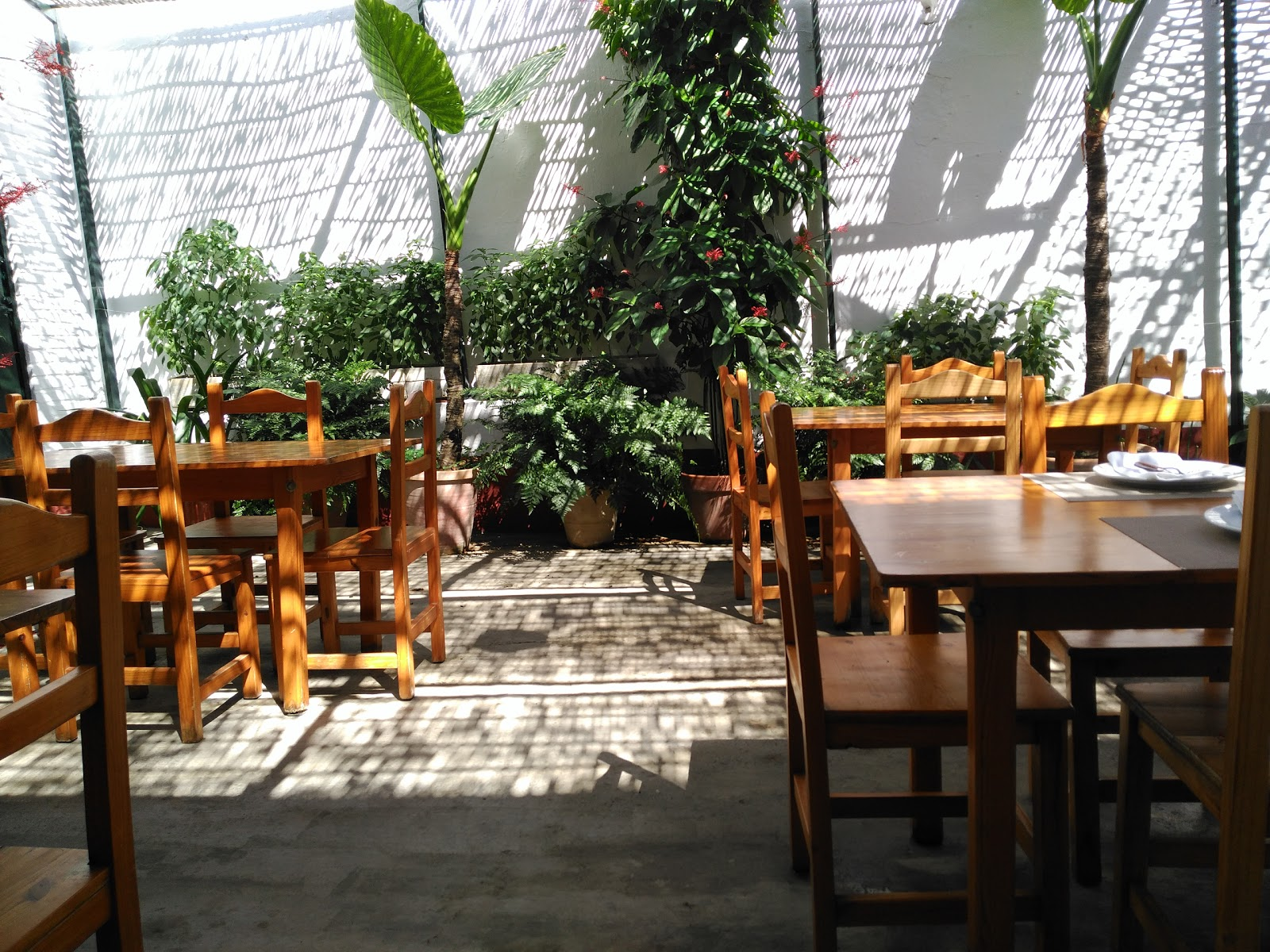 Bodega Café Galeon