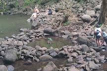 Secret Falls (Uluwehi Falls), Wailua, United States