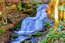 Larrabee State Park, Bellingham, United States