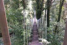 Rotorua Canopy Tours, Rotorua, New Zealand