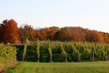 Brengman Brothers Winery, Traverse City, United States