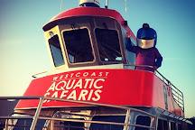 West Coast Aquatic Safaris, Tofino, Canada