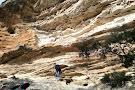 Anvil Rock Lookout