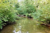 Glen Helen Nature Preserve, Yellow Springs, United States