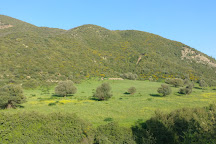 Chrea National Park, El Hamdania, Algeria