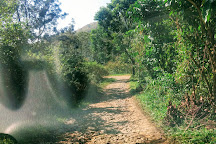 Mathikettan Shola National Park, Idukki, India
