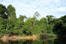Kourou River, Kourou, French Guiana