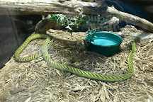 Kentucky Reptile Zoo, Slade, United States