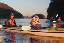 Shearwater Kayak Tours, Eastsound, United States