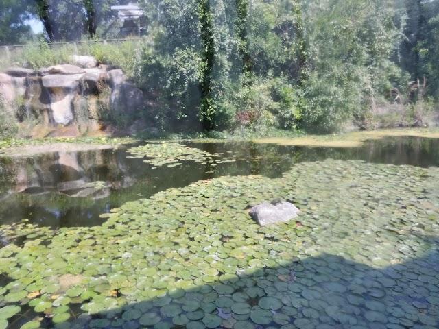 Zilker Nature Preserve
