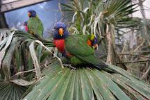 Vogelpark Avifauna, Alphen aan den Rijn, The Netherlands