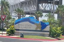 Texas State Aquarium, Corpus Christi, United States