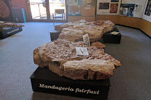 The Age of Fishes Museum, Canowindra, Australia